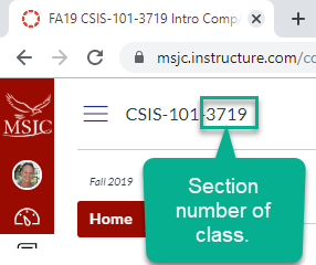 Tip: The Section number for your class is listed after the course number at the top-left of the Canvas page.